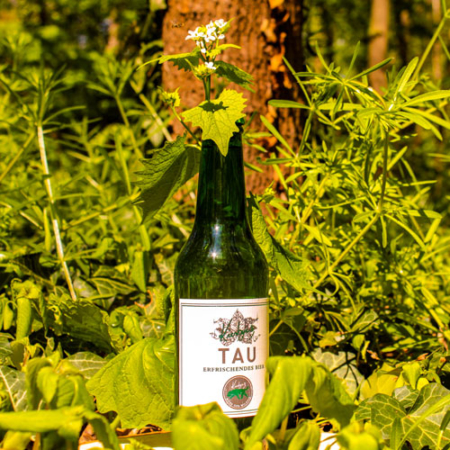 Kiesbyes Waldbier Tau Mint Infused Session IPA im Craft Bier Online Shop bestellen - Craft Beer online kaufen