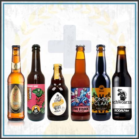 Bierpaket Österreich Biergeschenk 6 Flaschen regional experimentell ausgefallen im Bier Online Shop kaufen bestellen